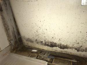 浴室エプロン内洗浄