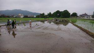 九州防水グループ田植え